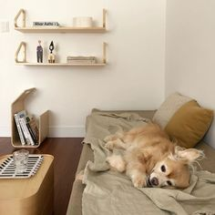 Find images and videos about room and interior on We Heart It - the app to get lost in what you love. Cream Aesthetic, Brown Aesthetic, Aesthetic Themes, Aesthetic Pictures, Soft Colors, Colours, Really Cute Puppies, Palette, Shades Of Beige