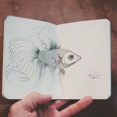Peixe Betta • Betta Splendens  Dia 123... #desenhosdoalti #desenhos #sketch #sketchers #sketchbook #art #artlovers #artbrazil #artworks #instaart #instartist #illustration #UmDesenhoPorDia #Week #dibujo #nankin #draw #drawing #iLike #Fish #BettaSplendens #PeixeBetta #Osphronemidae #Zoo #instaZoo #animals #animalia #simplicity #venustas