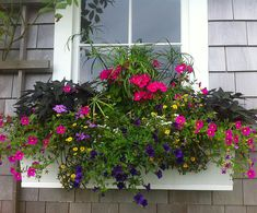 Christopher Oberg Environmental Design - A Nantucket landscaping company offering complete design, maintenance and construction services on Nantucket. Window Box Flowers, Window Boxes, Flower Boxes, Front Porch Planters, Nantucket Home, Flower Containers, Construction Services, Landscaping Company, Environmental Design