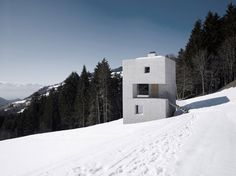 Mountain Cabin in Laternser Valley - marte.marte architects