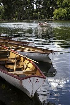 Bois de Boulogne in Paris.   I want to be transported into a toulouse lautrec painting, must pack a parasol!