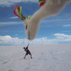 The vast salt flats of Salar de Uyuni, Bolivia offer the perfect backdrop for photographs that fool the eye. Creative Pictures, Great Pictures, Cool Photos, Family Pictures, Family Photography, Amazing Photography, Forced Perspective Photography, Best Friend Photos, Beach Pictures