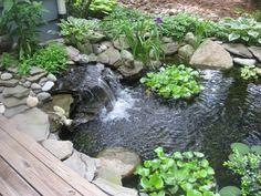 bassin de jardin sympa avec une petite cascade et plantes vertes
