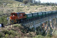 history of port elizabeth south africa - Google Search Port Elizabeth South Africa, Old Steam Train, Yesterday And Today, My Land, African History, Primates, Model Trains, Places To Go, Landscapes