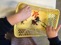 Spinnen pakken met behulp van een kleine plastic pincet (fijne motoriek - pincetgreep)