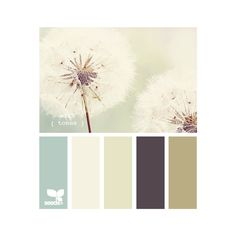 Design Seeds ❤ liked on Polyvore featuring color palettes, colors, colours, seeds and backgrounds