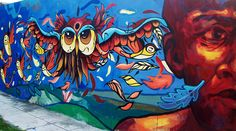 Detail of Fio Silva mural in Buenos Aires, Argentina. Owl street art.