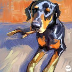 DOBERMAN PINSCHER PUP puppy dog CANVAS ART GICLEE PRINT #12