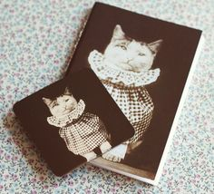 Vintage Cat photography notebook and Cat by ModernismAndVintage