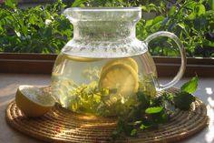 Svět Homeopatie: Meduňkové osvěžení Herbs, Herb, Medicinal Plants