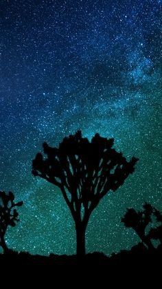 Starry sky, milky way, joshua tree wallpaper, background