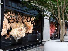Flowers in apple store window flower window, shop windows, retail windows, window display Retail Windows, Store Windows, Display Design, Store Design, Giant Flowers, Paper Flowers, Visual Merchandising Displays, Flower Window, Store Window Displays