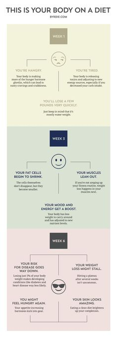 This Is Your Body on a Diet: An Infographic via @ByrdieBeautyUK
