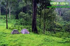 #Jungle #Camping in #Gavi #Thekkady #Kerala #Ecotourism...! Reach us GreenLeisure Tours & Holidays for any #Kerala #Gavi #Tour #Packages   www.greenleisuretours.com   For inquiries  - Call/WhatsApp: +91 9446 111 707  or Email – info@greenleisuretours.com Like us https://www.facebook.com/GreenLeisureTours for more updates on #Kerala #Tourism #Leisure #Destinations #SiteSeeing#Travel #Honeymoon #Packages #Weekend #Adventure #Hideout