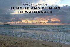 Color + Cameras : Su