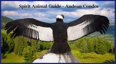 Inspires Vibrational Energy Self-Healing Practices Beautiful Meaningful Tattoos, Andean Condor, California Condor, Animal Spirit Guides, Power Animal, Medicine Wheel, Guardian Angels, Bald Eagle, Whale