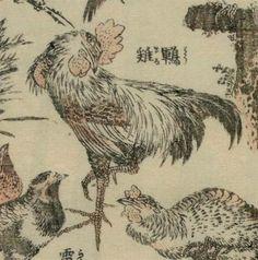 太田記念美術館(@ukiyoeota)さん | 鶤鶏(とうまる)」と書いてありますが、これは鶏の一品種の名前です