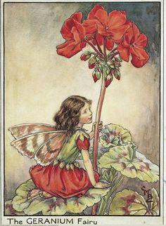 The Geranium Fairy