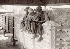 Cotton Pick'in | 1940 by Black History Album, via Flickr