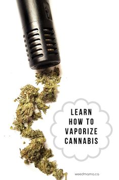 Weed Mama's preferred method is vaporizing cannabis. Learn what vaporizing is, how it works, what kind of vaporizers you can buy and how to properly adjust the temperature for your needs. Weed Facts, Growing Weed Indoors, Herb Vaporizer, Farming Ideas, Thc Oil, Oil Benefits, High Society, Hemp