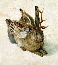 by Albrecht Dürer The wolpertinger is a chimeric creature from Bavarian folklore, said to inhabit the alpine forests.Wolpertinger by Albrecht Dürer The wolpertinger is a chimeric creature from Bavarian folklore, said to inhabit the alpine forests. Albrecht Durer, Cryptozoology, Mythological Creatures, Magical Creatures, Creature Design, Taxidermy, Animal Drawings, Art Drawings, Vikings
