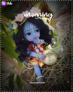 Krishna Video, Krishna Gif, Radha Krishna Songs, Krishna Drawing, Bal Krishna, Krishna Statue, Cute Krishna, Krishna Painting, Shree Krishna