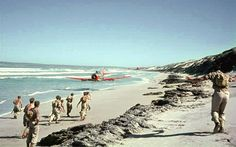 South African Air Force Harvard trainer rips up a beach on the Atlantic coast near Saldanha Bay with its propeller tips no more than three feet from the sandy surface. South African Air Force, Wagon R, Air Force Bases, Photo Story, Historical Pictures, Military Aircraft, Beach, Outdoor, Pilots