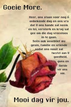 Afrikaanse Quotes, Goeie More, Morning Wish, Beef, Poems, Poetry, A Poem, Ox, Verses