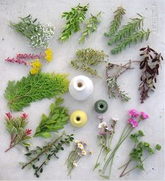 Many flower and leaves can be used for miniature flower arranging.