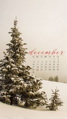 Snow Tree||#december2017 #calendar #wallpaper