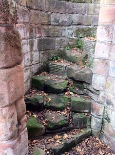 File:Spiral staircase in St. Mary's Cathedral, Coventry, UK. Stone Stairs, Take The Stairs, Stair Steps, Gnome House, Grand Staircase, Stairway To Heaven, Interior Exterior, Abandoned Places, Pathways