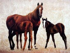 """Diana Beach """"Company for Dinner"""" Horse and Colt Print"""