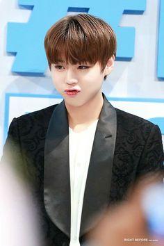 Wanna One 박지훈 (Park Jihoon) Produce 101, South Korean Boy Band, Korean Boy Bands, Bae, Cho Chang, Duck Face, Kim Jaehwan, Child Actors, Entertainment