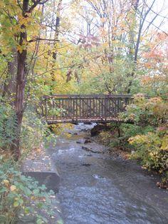 a bridge over Spencer Creek, Dundas