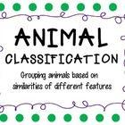 Perfect for teaching the Classification of Animals!    Classifying Vertebrates vs, Invertebrates  Invertebrates:  Protozoa  Annelids  Mollusks  Echinoderm...