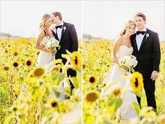 Boda en Bodega, campos de girasoles un marco hermoso para un día especial :-) #weddings #vineyard