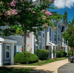 Envision living at Arbor Grove. Browse 17 photos of our apartment community. Apartment Communities, Bedroom Apartment, Virtual Tour, View Photos, Townhouse, Apartments, Tours, Outdoor Decor, Home Decor