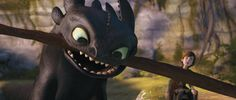 httyd .... hiccup and toothless