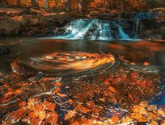 Fall is Coming by Nick Burwell | Earth Shots