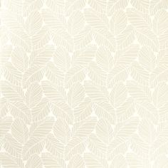 Palm Leaf White Floral Wallpaper at Laura Ashley