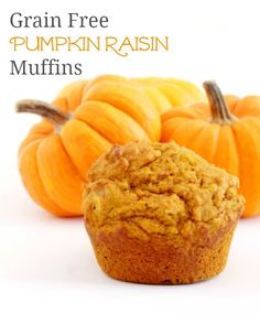 Pumpkin Raisin Muffins {Grain-Free, Primal & GAPS Friendly} - Honest Body - GAPS Diet and Nutritional Therapy