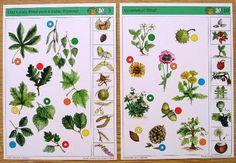 Charts For Kids, Multiplication, Montessori, Test Test, Album, Cousins, Card Book