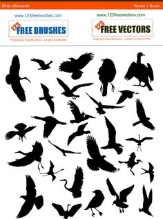 Bird Silhouette free pack by 123freevectors on deviantART
