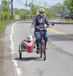 bike Side Car with dog