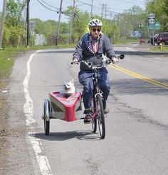 bike Side Car with dog