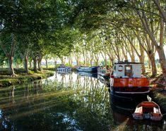 The Canal du Midi meanders through ancient villages, past Roman fortifications and through beautiful vineyards... It is an amazing place to float around on a barge with your lover! http://www.gobarging.com/cruises-in-canal-du-midi
