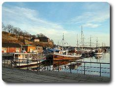 Excursión para tu crucero en Oslo con TU Italia