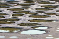 30 raros e deslumbrantes fenômenos naturais - Lago Manchado, no Canadá: esse lago surreal contém elevadíssimas concentrações de sulfato de magnésio, cálcio e sódio.
