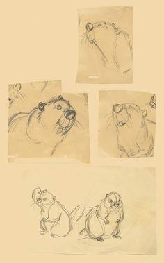 Deja View: Milt's Design Doodles for the Beaver | © Walt Disney Animation Studios*  • Blog/Website | (www.disneyanimation.com) • Online Store |  (www.disneystore.com) ★ || CHARACTER DESIGN REFERENCES™ (https://www.facebook.com/CharacterDesignReferences & https://www.pinterest.com/characterdesigh) • Love Character Design? Join the #CDChallenge (link→ https://www.facebook.com/groups/CharacterDesignChallenge) Promote your art in a community of over 50.000 artists! || ★