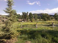 sweet palace Phillipsburg Montana | ... Lake, near Philipsburg, Montana - Picture of Philipsburg, Montana